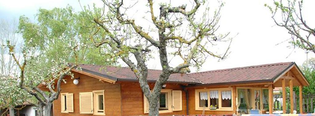 Model casa din lemn masiv cu terasa